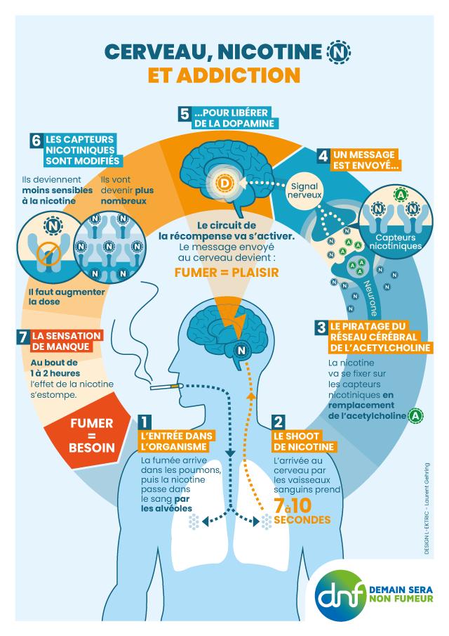 DNF-Cerveau et addiction